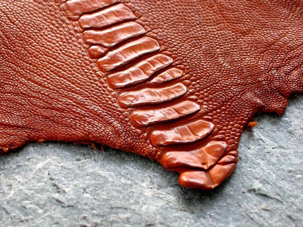 Da đà điểu là chất liệu túi xách cao cấp